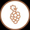 grappe-picto-1